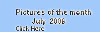 july-2009