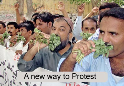 June, 25: Daily wagers of BISE eat grass during a protest for permanent orders