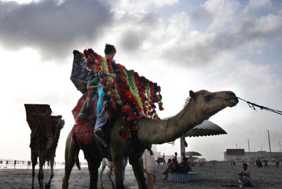 July, 01: Women and children enjoying camel ride in Clifton Beach in the during cloudy weather